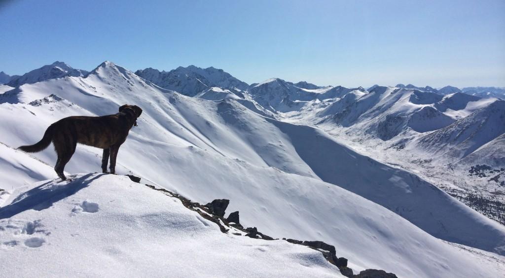 charas ridge
