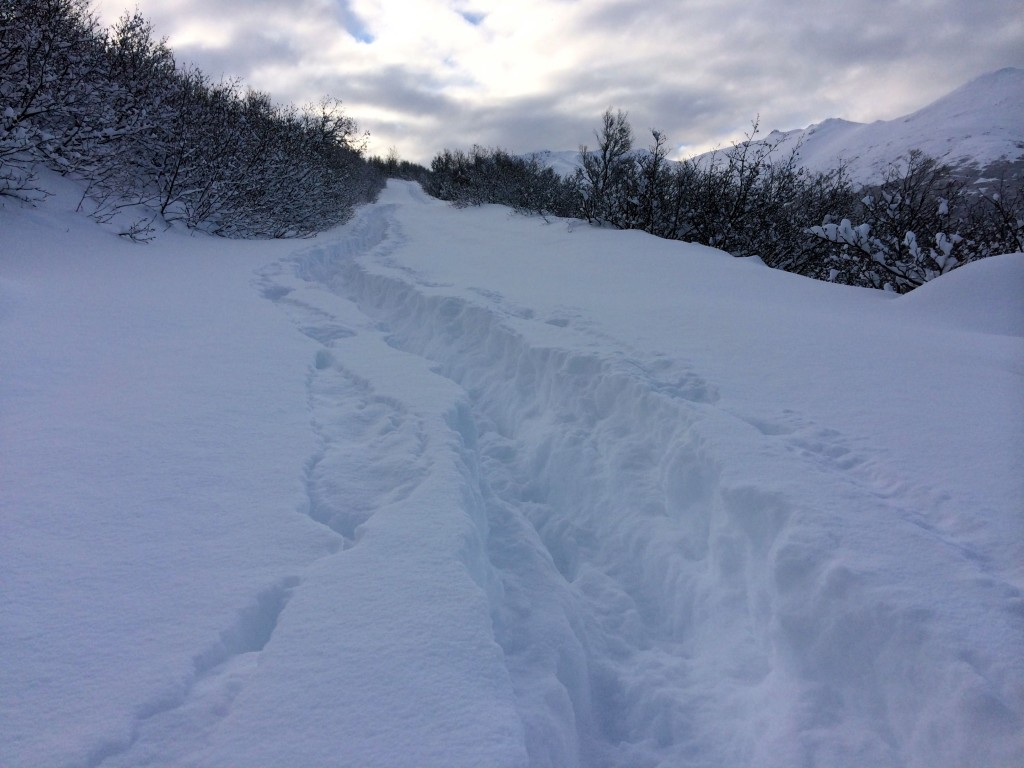 deep trail